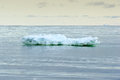 Iceberg small in ross sea Royalty Free Stock Photo