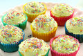Iced Cup Cakes Stock Photography