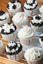 Iced Gourmet Cup Cakes Royalty Free Stock Photo