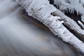 Iced Logs and Creek Stock Photos
