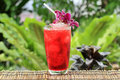 Iced roselle juice thai culture soft drink Royalty Free Stock Image