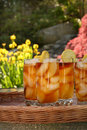 Icetea Royalty Free Stock Photo