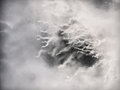 Icey tendrils ice in a frozen lake processed in black and white for a dreamy look Royalty Free Stock Image