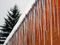 Icicle Stock Photography