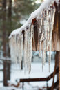 Icicle from house roof at winter Royalty Free Stock Image