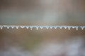 Icicle on metal wire with blur background Royalty Free Stock Photos