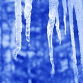 Icicle pictures blue background stock photos icicles and water drops Royalty Free Stock Images