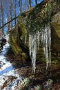 Icicles above freeze stream. Detail of frozen ice Royalty Free Stock Photo