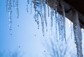 Icicles glint in the sun beautiful against blue sky Royalty Free Stock Photography