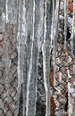 Icicles hanging Royalty Free Stock Images