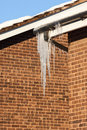 Icicles hanging from a gutter in sunlight with snow covered roof and brick wall against a clear blue sky Stock Photos