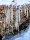Icicles hanging from a rock portrait version are in this photo which is positioned as Stock Photography