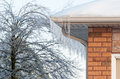 Icicles and tree encased in ice on a brick house after an storm Royalty Free Stock Image