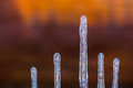 Icicles on the wall of wooden house image flipped vertically Stock Photos