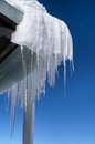 Icicles in winter beautiful glint against deep blue sky Royalty Free Stock Photography
