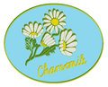 Icon with chamomile for green pharmacy Royalty Free Stock Photography