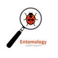 Icon of entomology Royalty Free Stock Photo