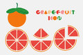 Icon set of grapefruit graphic with circular shape design.