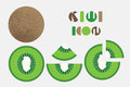 Icon set of kiwi fruit graphic with circular shape design.