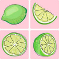Icon set - lime fruit Stock Photography