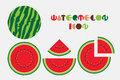 Icon set of watermelon graphic with circular shape design.