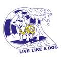 Live like a dog
