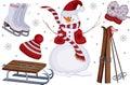 Iconos del deporte y del ocio de invierno Foto de archivo libre de regalías