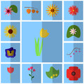 Icons blue, shadow, square, . Icon set floret. Icon tulip, yellow, Royalty Free Stock Photo