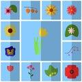 Icons blue, shadow, square, . Icon set floret. Icon tulip, yellow, Royalty Free Stock Photo