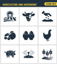 Icons set premium quality of agriculture and agronomy icon farming feeding business. Modern pictogram collection flat