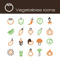 Icons set vegetables the modern vector eps Royalty Free Stock Images