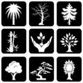 Icons trees Stock Images