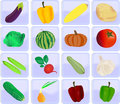 Icons with vegetables set of for a site Royalty Free Stock Image