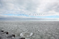 Icy Chicago Winter Lake Michigan, Cloudy With a Sliver of Sky Blue Peeking Through and a Line of Flying Geese Over the Horizon Royalty Free Stock Photo
