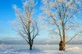 Icy coast Royalty Free Stock Image