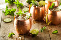 Icy cold moscow mules with ginger beer and vodka Royalty Free Stock Photos