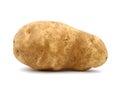 Idaho potato Royalty Free Stock Photo