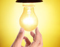 Ideas bulb light on  hand Royalty Free Stock Photo