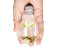 Ideas light bulb in hand the Stock Images