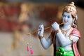 Lord Krishna Royalty Free Stock Photo