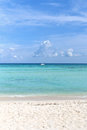 Idylic beach at playa del carmen with no people mexico Royalty Free Stock Images