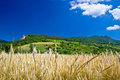 Idyllic agricultural mountain landscape of croatia kalnik region Stock Photo