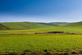 Idyllic bautiful landscape of a green rural field Stock Images