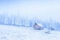 Idyllic cottage in winter ukraine europe Royalty Free Stock Image