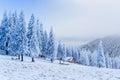 Idyllic cottage in winter ukraine europe Royalty Free Stock Images