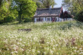 Idyllic country cottage with spring meadow on bornholm denmark Royalty Free Stock Photo