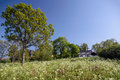 Idyllic country cottage with spring meadow on bornholm denmark Stock Images