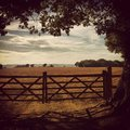 Idyllic English Countryside Stock Photography