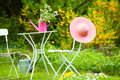 Idyllic garden with table and chairs Royalty Free Stock Images
