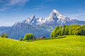 Idyllic landscape in the Alps with fresh green meadows in spring Royalty Free Stock Photo